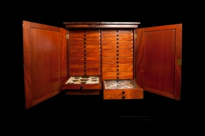 A.R. Wallace specimen cabinet
