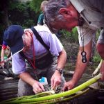 Entomologists at work during a field study